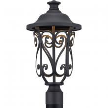 Progress P540037-031-30 - Leawood Collection LED One-Light Post Lantern