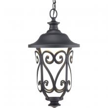 Progress P550037-031-30 - Leawood Collection LED One-Light Hanging Lantern