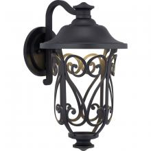 Progress P560105-031-30 - Leawood Collection LED One-Light Medium Wall Lantern