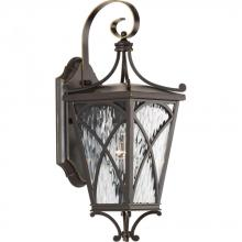 Progress P6080-108 - Cadence Collection One-Light Small Wall Lantern